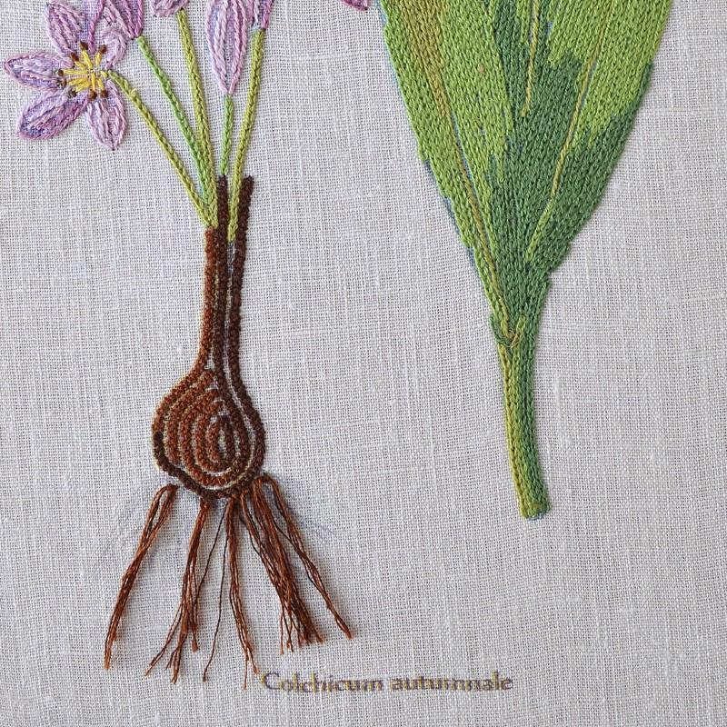 """Nova Sloboda - Набір для вишивки гладдю та спеціальними стібками """"Ботаніка. Пізньоцвіт осінній"""" / фото №1873"""