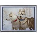 """Набір для вишивки нитками на канві з фоновим зображенням """"Снігові пси"""""""