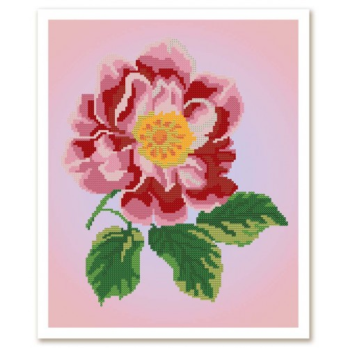 """Ткань со схемой для вышивки бисером """"Цветок шиповника"""""""
