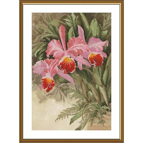 """Набор для вышивки нитками на канве с фоновым изображением """"Тропическая орхидея"""""""