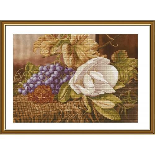 """Набор для вышивки нитками на канве с фоновым изображением """"Гроздь винограда"""""""