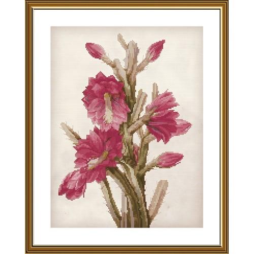 """Набір для вишивки нитками на канві з фоновим зображенням """"Квітучий кактус"""""""
