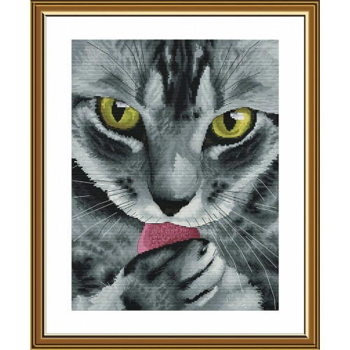 """Набір для вишивки нитками на білій канві """"Містер Кіт"""""""